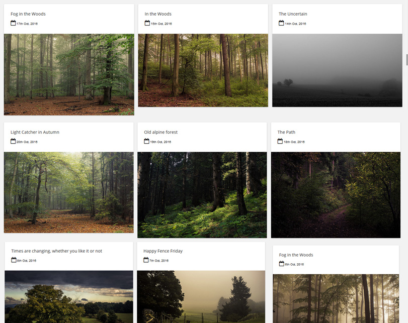 Flickr Gallery